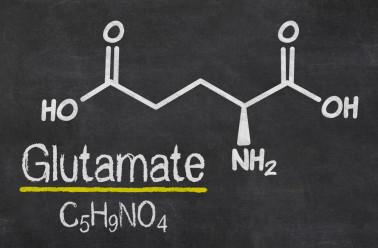 Les dangers du Glutamate Monosodique